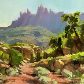 Mountain of Spires by Steve Henderson