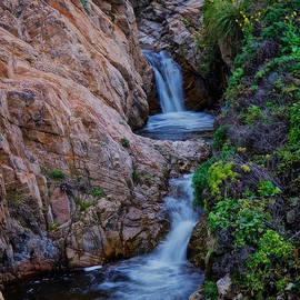 Mountainside, Soberanes Creek, Garrapata State Park, California  by Flying Z Photography by Zayne Diamond