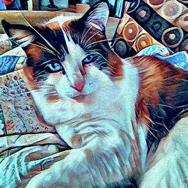 Moussie the Cat  Modern Abstract  by Michele Avanti