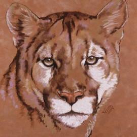 Mowgli in Pastel by Barbara Keith