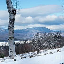 Mt Blue State Park by Alana Ranney