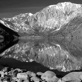 Mt. Laurel Reflection In Monochrome by Douglas Taylor