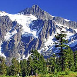 Mt. Shuksan Panorama by Douglas Taylor