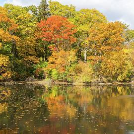 Multicolored Lakeside Autumn - Grenadier Pond in High Park Toronto by Georgia Mizuleva