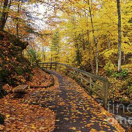 Munising Falls Trail in Autumn by Rachel Cohen
