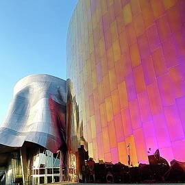 Museum of Pop Culture in Seattle, Washington by Lyuba Filatova