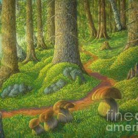 Mushroom forest by Veikko Suikkanen