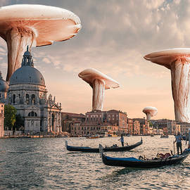 Mushrooms and Venice Canal in Italy Surreal by Barroa Artworks