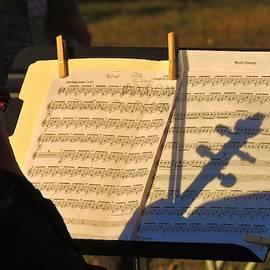 Music Shadows by Carmen Macuga
