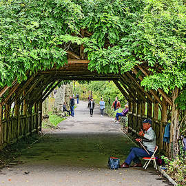 Music Under The Leaves - Central Park by Allen Beatty