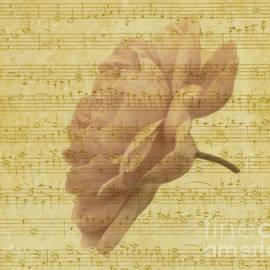 Musical Romantic Rose by Karin Gandee