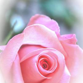 My Valentine by Deborah Klubertanz