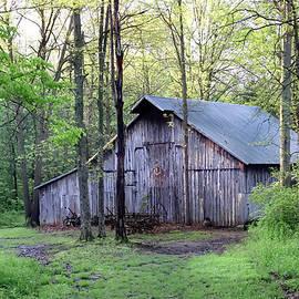 Myers Historic Barn, Seymour, Indiana by Steve Gass