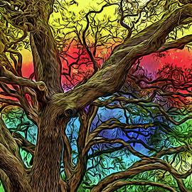 Mysterious Oak Variation 4 by Lorraine Baum