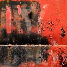 Mystery Voyage by Sabina D'Antonio