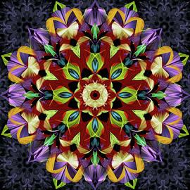 Mystic Flower  Mandala by Grace Iradian