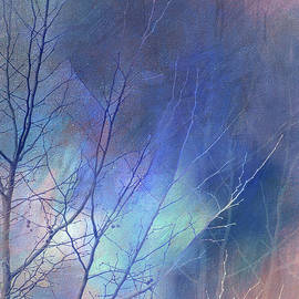 Mystical Winter Tree by Terry Davis