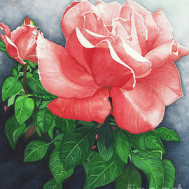 Napa Valley Rose by Barbara Jewell