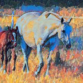 Narla And Her Foal Evie by Joan Stratton