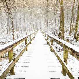 Natchez Trace In Snow by Jordan Hill