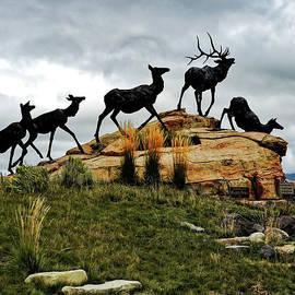 National Museum of Wildlife Art by Norma Brandsberg