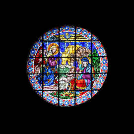 Nativity Stained Glass Window Duomo Florence by Marlin and Laura Hum
