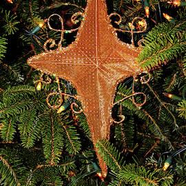 Nativity Star by Cynthia Guinn