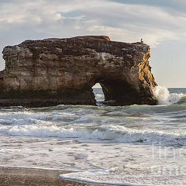 Natural Bridges With Pelican by Sarah Ainsworth
