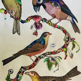 Natural History of Eye Birds
