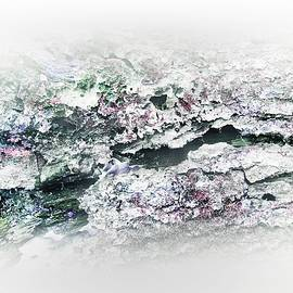 Nature Abstract #239 by Slawek Aniol