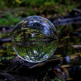 Nature Ball by Linda Howes