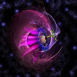 Nebula by Rosalie Scanlon