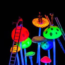 Neon Mushroom Miners 2 by Steve Purnell