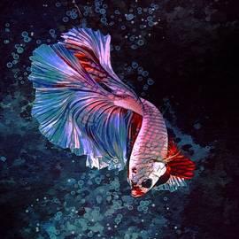 Neon Reddish Pink Betta Fish  by Scott Wallace Digital Designs