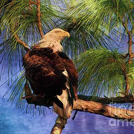 Nesting Florida Eafle by Deborah Benoit
