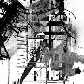 Network - Aniseed by Zeb Eddy