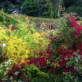 New England Fall Color by Bill Wakeley