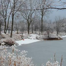 New Snowfall by Barbara Ebeling