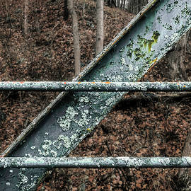 Patches of Lichen on Old Metal Bridge -  ruggedmetalbridgedetail111920