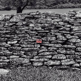 Lone Red Brick  -  stonewallredbrickblkwhi08072020