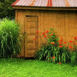 The Little Door  - littledoor070921 by Judy Duncan