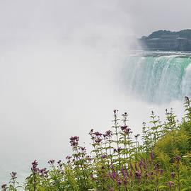 Niagara Falls #2 by Helen Filatova