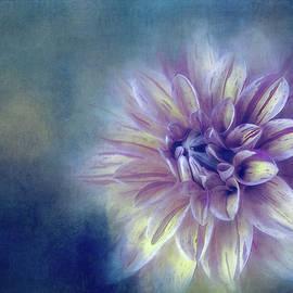 Night Blue Dahlia by Terry Davis