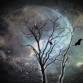 Night Flight by Jim Love