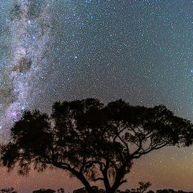 Night in the Outback by Steve Luther