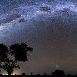 Night Sky and Milky Way Galaxy from Kalahari Desert in Namibia by Tom Schwabel