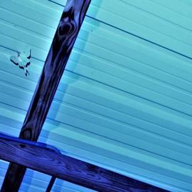 Luna Moth In Blue, Industrial Cross Beams by Adrienne Hantz Kelley