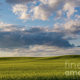 North Dakota in the summer by Jeff Swan