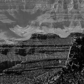 North Rim Grand Canyon 15 BW by Renny Spencer