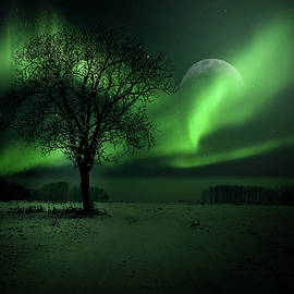 Northern Lights by Phil Sampson
